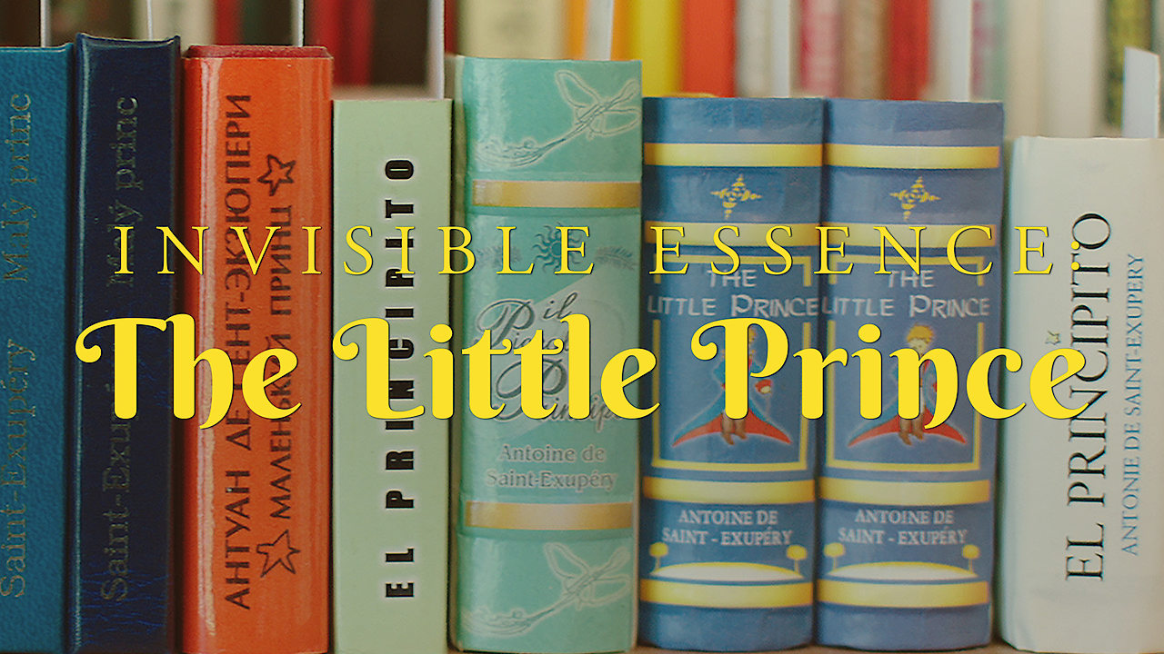 Invisible Essence: The Little Prince on Netflix AUS/NZ