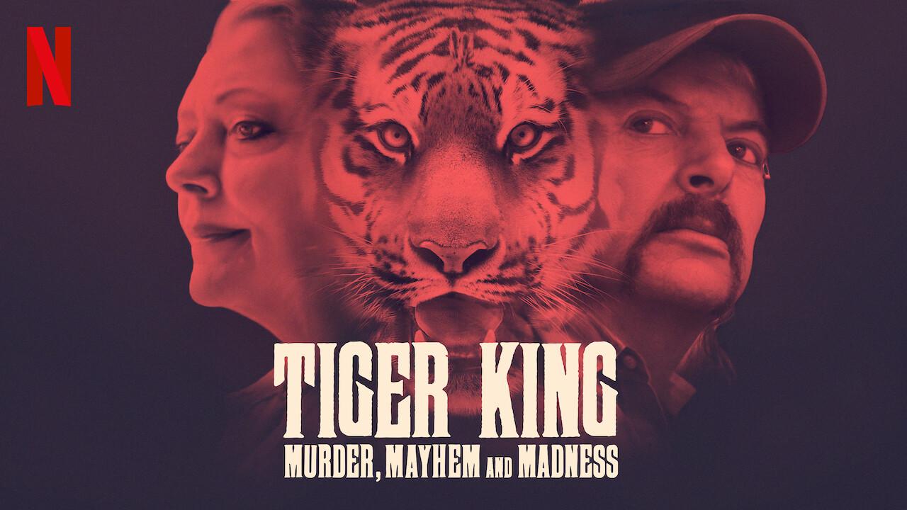 Image result for tiger king