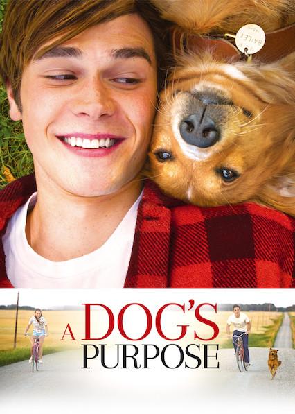 A Dog's Purpose on Netflix AUS/NZ