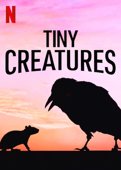 Tiny Creatures on Netflix AUS/NZ