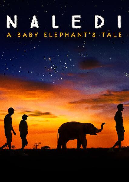 Naledi: A Baby Elephant's Tale on Netflix AUS/NZ